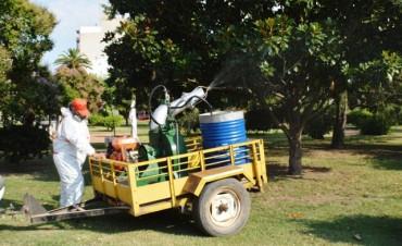Dengue: Comenzó la segunda etapa de fumigación