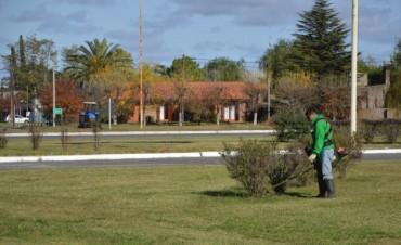 Se realizan tareas de mantenimiento en la Rotonda de la Ruta Nacional 226