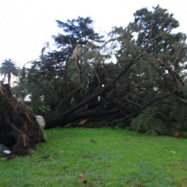Daños en Urdampilleta por el temporal