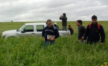 Un campo argentino fue seleccionado mundialmente por su experiencia sin agrotóxicos
