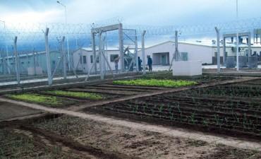 El Servicio Penitenciario trabaja en la reinserción de los internos con la ayuda de los Talleres