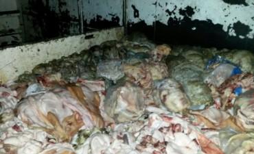 Incautan un camión con huesos y carne putrefacta en plaza España