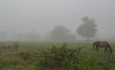 Entre 30 a 70mm el registro de lluvia en el partido de Bolívar