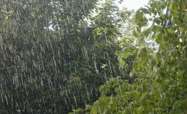 En Bolívar, un promedio de unos 33 milímetros en la lluvia caída esta noche de lunes