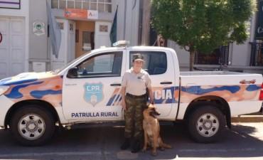 La Policía de 9 de Julio cuenta con un perro adiestrado para operativos 'Anti-Drogas'